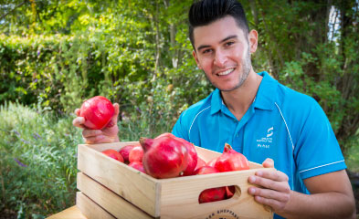 Rohan Sali with a box of pomegranates.