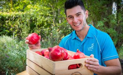 Rohan Sali with a box of pomegranates.