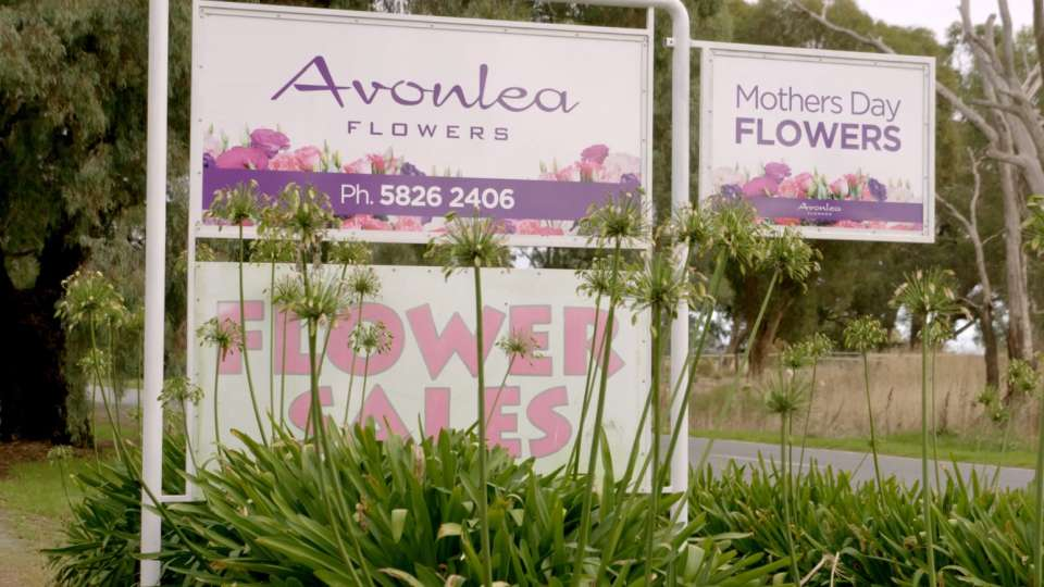 Avonlea Flowers - Greater Shepparton Great Thing Happen Here